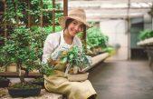 Planten verzorgen